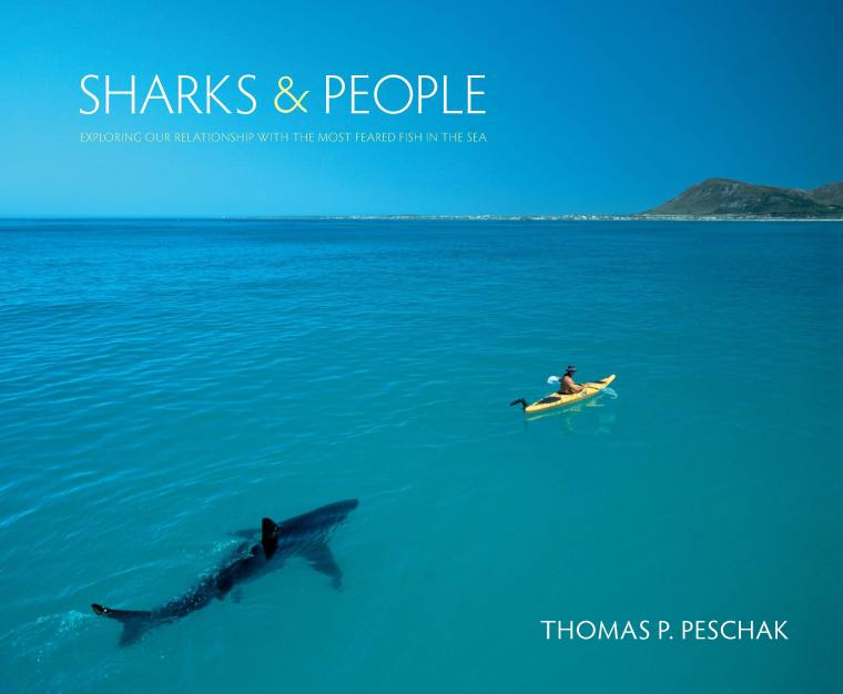 sharks and people cover